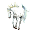 Arabian Horse ##STADE## - coat 16026