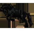 Friesian Horse ##STADE## - coat 1000000110