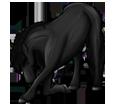 Friesian Horse ##STADE## - coat 1000000126