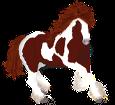 American Paint Horse ##STADE## - coat 1000000163