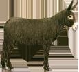 Poitou Donkey ##STADE## - coat 69